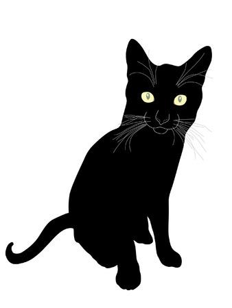 meow: black cat silhouette
