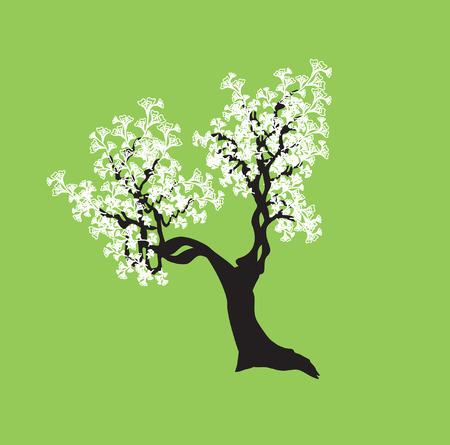 bonsai: abstract tree, symbol of nature