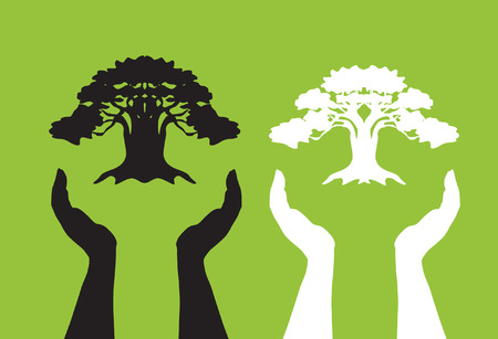take care: human hands take care of tree, symbol of nature