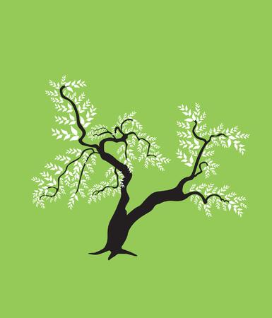bonsai: abstract bonsai tree, symbol of nature