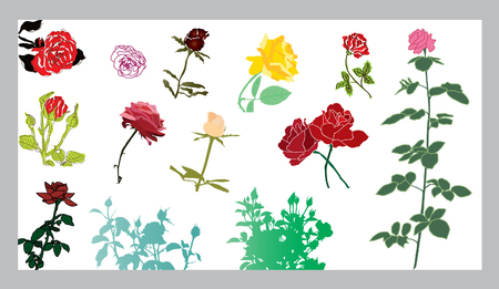 set of 13 rose silhouettes, elements for your design Stock Vector - 8614455