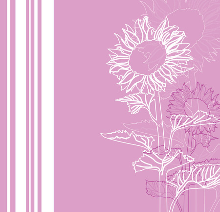 floral invitation for life events with space for text, with sunflowers in white pink colors Vector