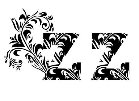 buchstabe z: decorative letter Z for your design Illustration