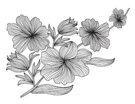 kézzel rajzolt dekoratív virág eleme a tervezés Illusztráció
