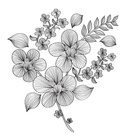 Elementi decorativi floreali per la progettazione Archivio Fotografico - 10347597