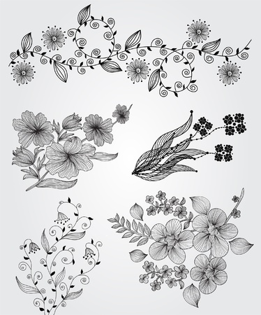set of decorative floral elements for your design Illustration
