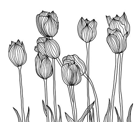 kézzel rajzolt, dekoratív tulipánok a design
