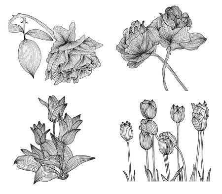 sor elegáns dekoratív rózsa és tulipán virágok a design