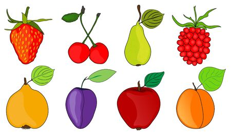 set of ripe and tasty fruits, healthy vegetarian food Vector
