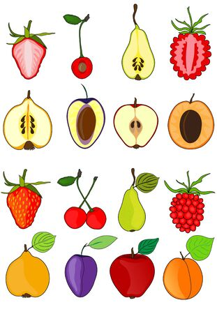 set of fruits, whole and sliced, healthy vegetarian food for your design Vector