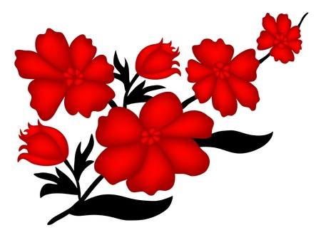 elegant floral decoration for your design  Vector
