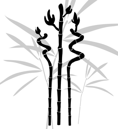 elegant hand drawn bamboo for your design
