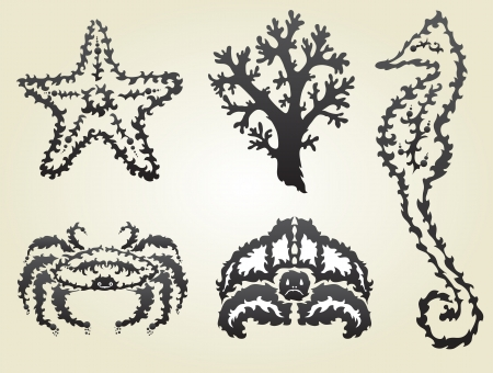 hand drawn decorative sea animals, design elements Vector