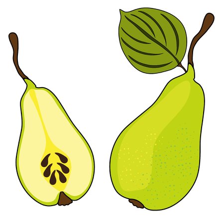 ripe pear fruits, whole and sliced, healthy vegetarian food Vector