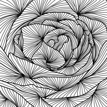 hand drawn decorative rose, close up, design element Vector