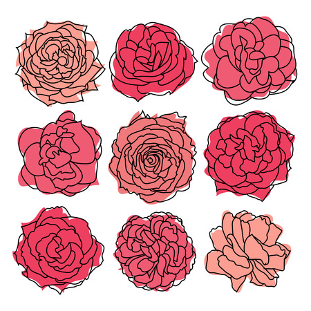 set of 9 decorative hand drawn roses, design elements Vector
