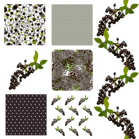 set of 6 elegant seamless patterns with decorative black elderberries, dots and abstract flowers, design elements Illustration