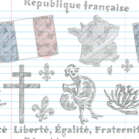 elegant seamless pattern with principal symbols of France, map, flag and slogan. Design element