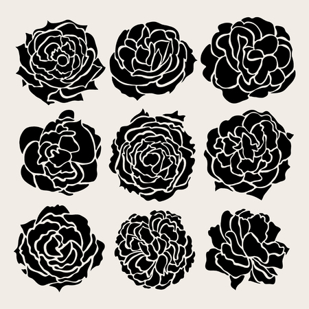 Elegant decorative rose flowers set, design elements. Floral decorations for vintage wedding invitations, greeting cards, banners. Love symbols Vector