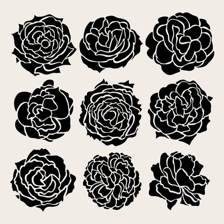 Elegant decorative rose flowers set, design elements. Floral decorations for vintage wedding invitations, greeting cards, banners. Love symbols Vector