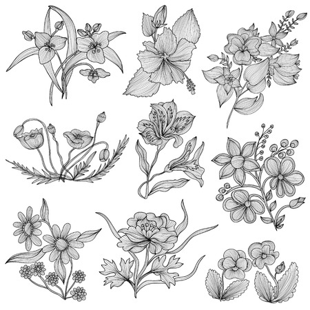 Set of 9 elegant decorative flowers, design elements. Floral branches. Floral decorations for vintage wedding invitations, greeting cards, banners. Lilly, poppy, peony, pansy, hibiscus flowers Illustration