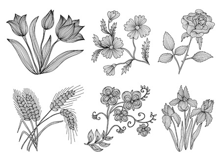 flower arrangement: Set of 6 elegant decorative flowers, design elements. Floral branches. Floral decorations for vintage wedding invitations, greeting cards, banners.