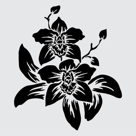 Élégantes fleurs d'orchidées décoratives, éléments de conception. Branche fleurie.