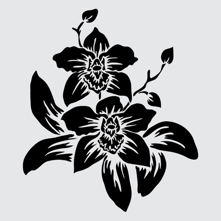 Elegant decorative orchid flowers, design element. Floral branch.  Illustration
