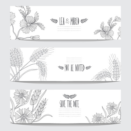 Elegant cards with decorative cornflowers and wheat, design elements. Can be used for wedding, baby shower, mothers day, valentines day, birthday cards, invitations. Vintage decorative flowers. Vector