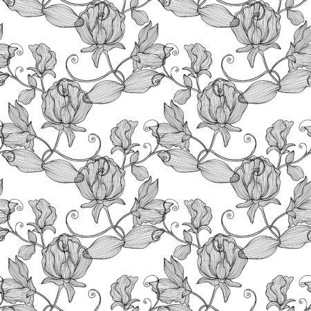 sweet pea: Elegant seamless pattern with hand drawn decorative sweet pea flowers, design elements.  Illustration