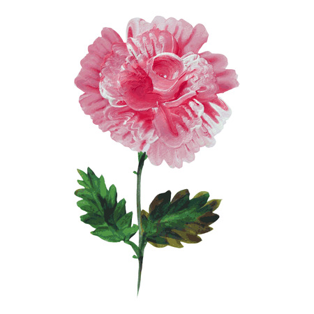 Decorative oil painted flower, design element. Can be used for wedding, baby shower, mothers day, valentines day cards, invitations. Painted flower Vector