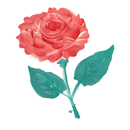 Decorative oil painted rose flower, design element. Can be used for wedding, baby shower, mothers day, valentines day cards, invitations. Painted flower Vector