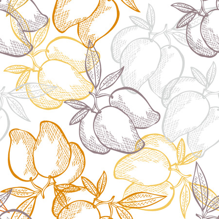 fruit illustration: Elegant seamless pattern with hand drawn decorative mango fruits, design elements. Can be used for invitations, greeting cards, scrapbooking, print, gift wrap, manufacturing. Food background