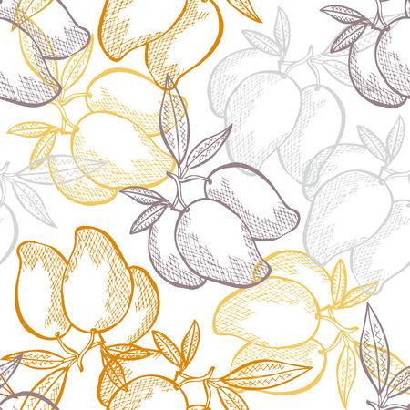 mango fruta: Modelo incons�til elegante con mano dibuja frutos de mango decorativas, elementos de dise�o. Puede ser utilizado para las invitaciones, tarjetas de felicitaci�n, scrapbooking, de impresi�n, papel de regalo, de fabricaci�n. Fondo de alimentos Vectores
