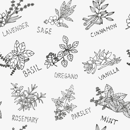 Elegant seamless pattern with hand drawn decorative herbs and condiments,design elements. Can be used for invitations, greeting cards, scrapbooking, print, gift wrap, manufacturing. Food background