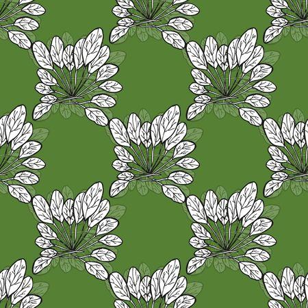 spinat: Elegante nahtlose Muster mit Hand gezeichneten Spinat, Design-Elemente.