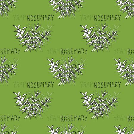 rosemary: Elegant seamless pattern with hand drawn rosemary, design elements.