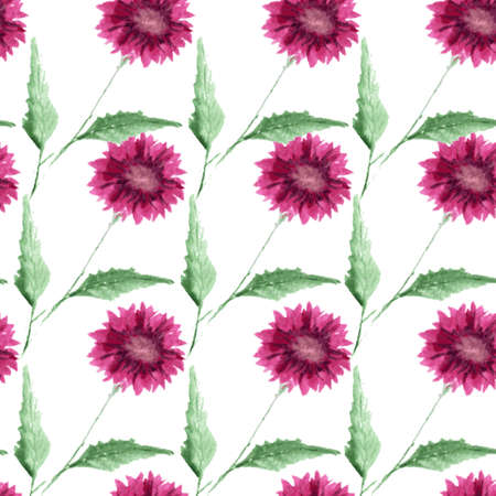 aster: Elegant seamless pattern with watercolor painted aster flowers, design elements. Floral pattern for wedding invitations, greeting cards, scrapbooking, print, gift wrap, manufacturing
