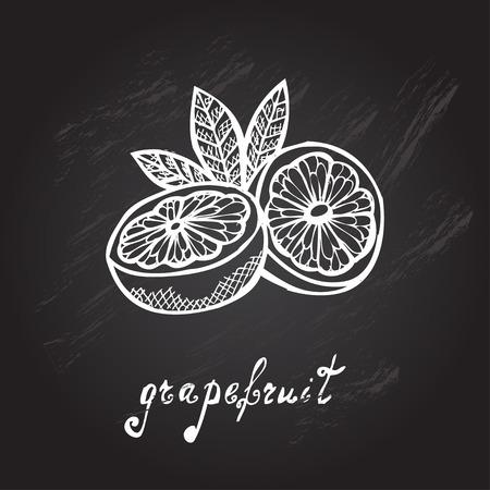 grapefruits: Hand drawn decorative sliced grapefruits, design elements Illustration