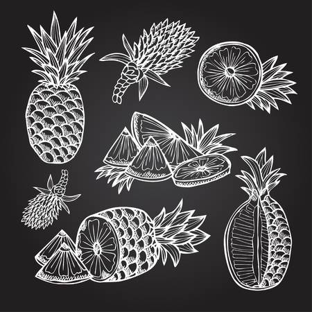 pineapple: Hand drawn decorative pineapples, design elements. Citrus collection. Can be used for cards, invitations, gift wrap, print, scrapbooking. Kitchen theme Illustration