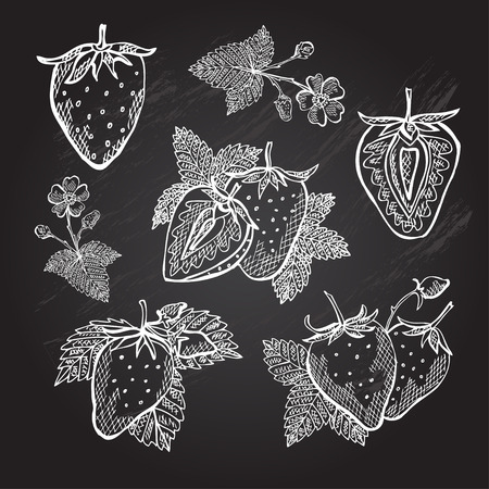 strawberry: Hand drawn decorative strawberries, design elements. Can be used for cards, invitations, gift wrap, print, scrapbooking. Kitchen theme. Chalkboard background