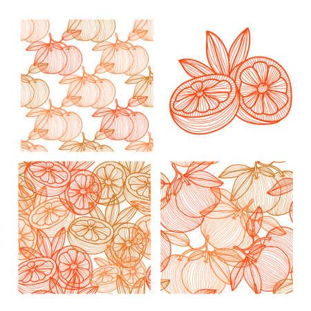 grapefruits: Elegant seamless patterns set with hand drawn decorative grapefruits, design elements