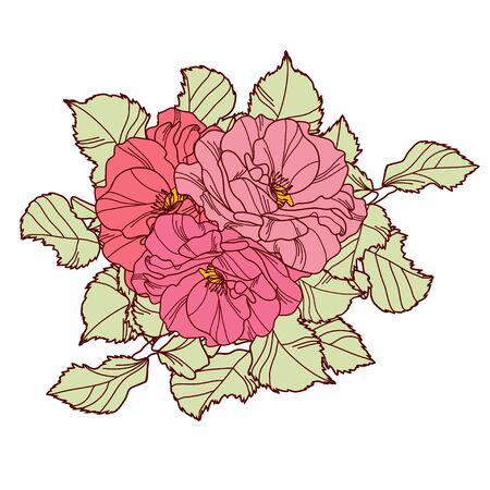 rose flower: Elegant decorative rose flowers, design element. Floral branch. Floral decoration for vintage wedding invitations, greeting cards, banners.