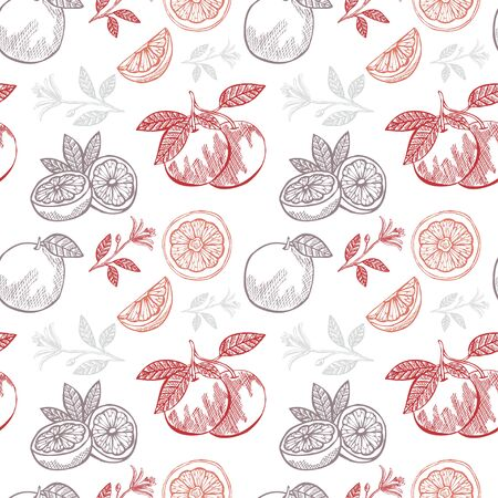 grapefruits: Elegant seamless pattern with hand drawn decorative grapefruits, design elements. Can be used for invitations, greeting cards, scrapbooking, print, gift wrap, manufacturing. Food background
