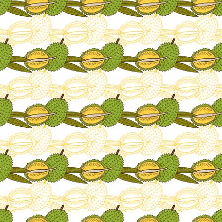 Durian: mẫu trang trí liên thanh lịch với vẽ tay trái sầu riêng trang trí, các yếu tố thiết kế. Có thể được sử dụng cho các lời mời, thiệp chúc mừng, album ảnh, in ấn, bọc quà tặng, sản xuất. nền thực phẩm