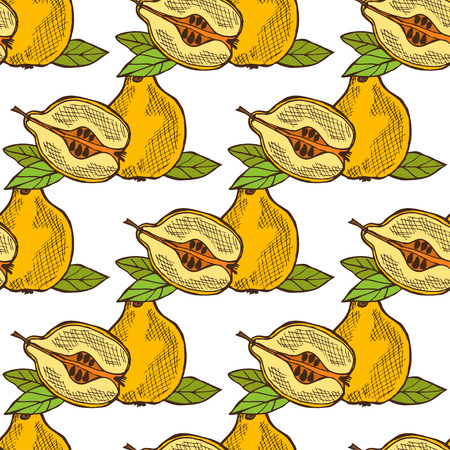 quince: Elegant seamless pattern with hand drawn decorative quince fruits, design elements. Can be used for invitations, greeting cards, scrapbooking, print, gift wrap, manufacturing. Food background