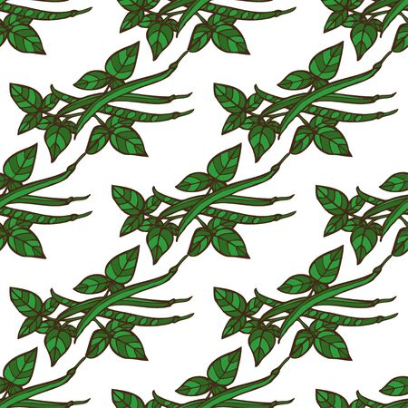 green been: Elegant seamless pattern with hand drawn green beans, design elements. Can be used for invitations, greeting cards, scrapbooking, print, gift wrap, manufacturing. Food background Illustration