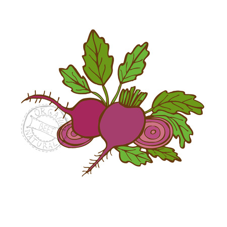 beets: Hand drawn decorative beets, design elements. Can be used for cards, invitations, gift wrap, print, scrapbooking. Kitchen theme