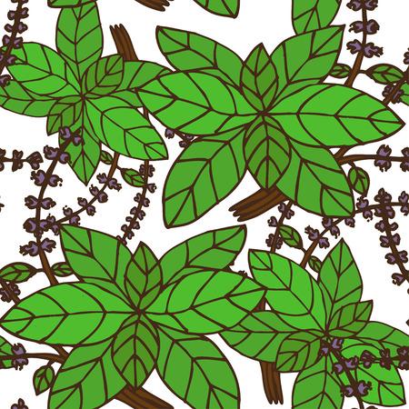 basil: Elegant seamless pattern with hand drawn decorative basil