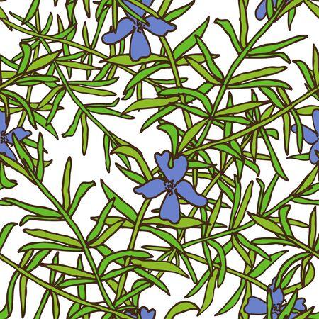 rosemary: Elegant seamless pattern with hand drawn decorative rosemary